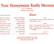 Is-Your-Honeymoon-Really-Necessary-2